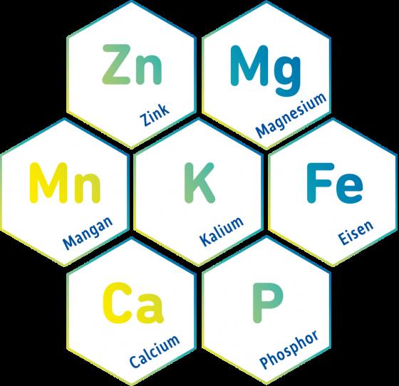 Mineralstoffe-Spurenelemente